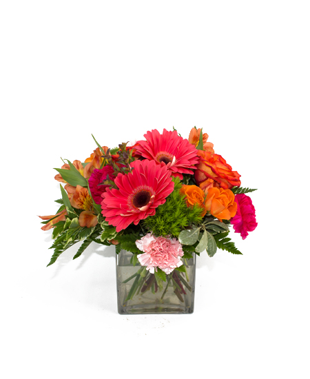 Bestsellers chosen spot sunset rochester ny florist rockcastle chosen spot sunset same day delivery mightylinksfo