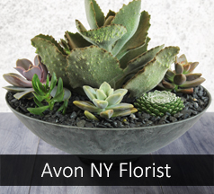 Florist Avon New York