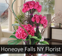 Flowers Honeoye Falls New York