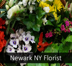 Florist Newark New York